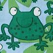 motyw żaby